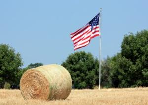flag farm