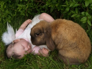 easter_rabbit_and_baby